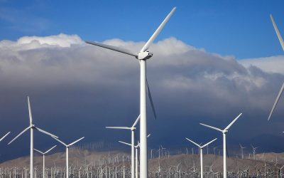 How green electricity is generated in a wind power plant